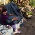 fishing rod web