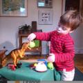 dinosaur roar 2
