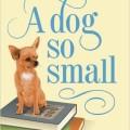 dog so small